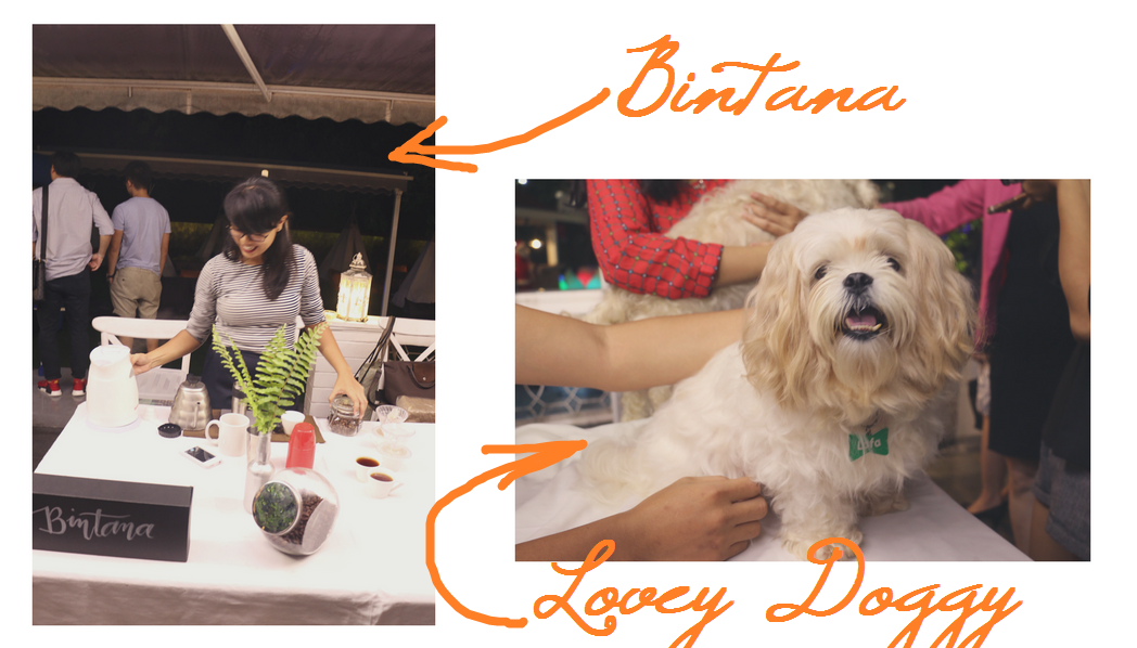 FWD Orange World lifestyle rewards app launch - la vie cebu - lovey doggy dog cafe and bintana - ching sadaya blog